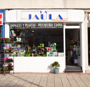 LA-JAULA-6