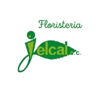 FLORISTERIA JELCAL